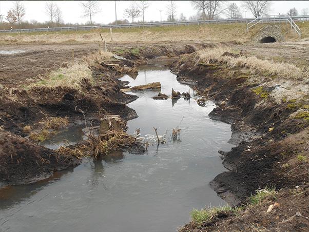 neues naturnahes Gewässerbett im Waidbach